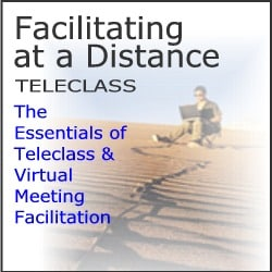 virtual facilitation webinar