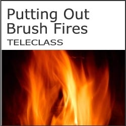 putting_out_brushfires_250